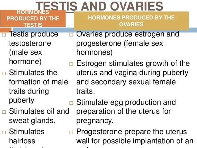 Unit 4 endocrine system(1)