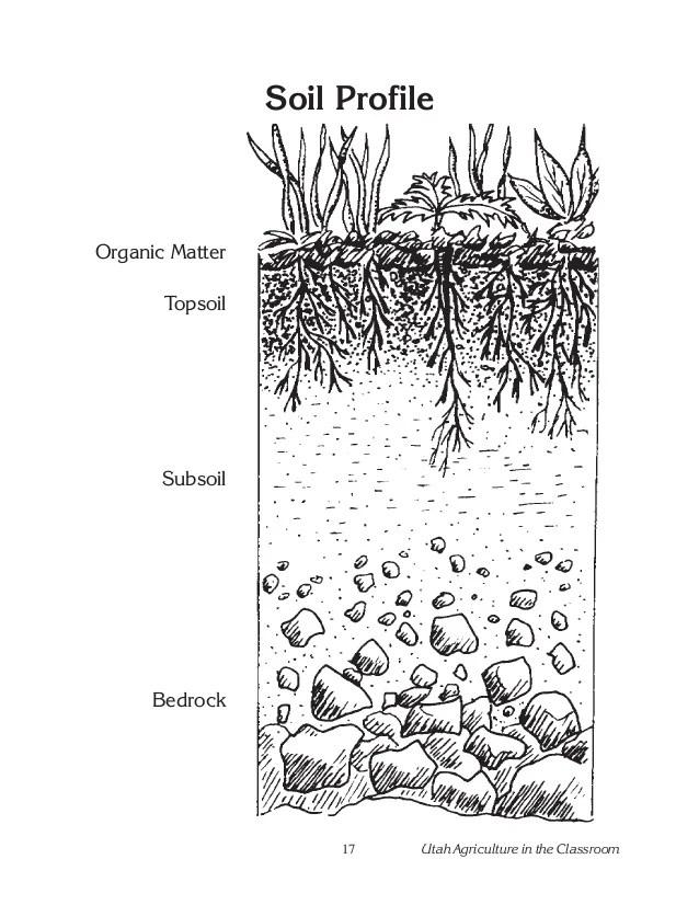 Soil Horizons Worksheet