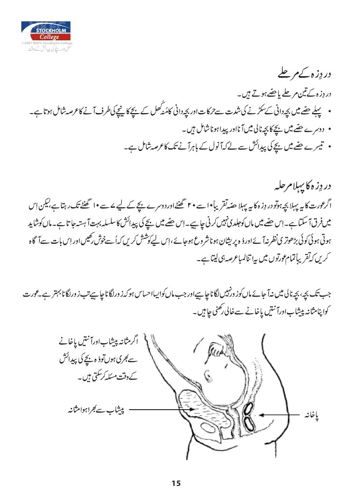 Mkfc stockholm college also urdu pregnant manual rh slideshare