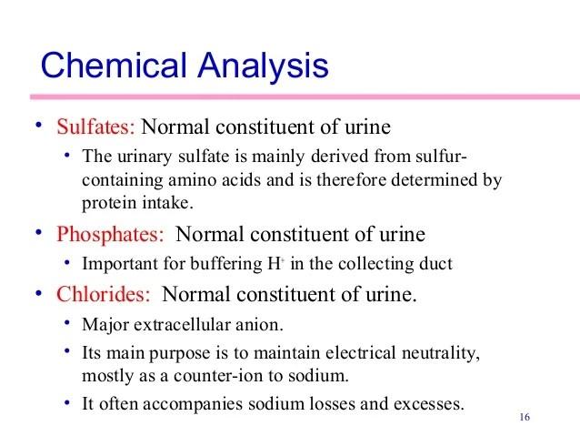 Large Bilirubin Urine