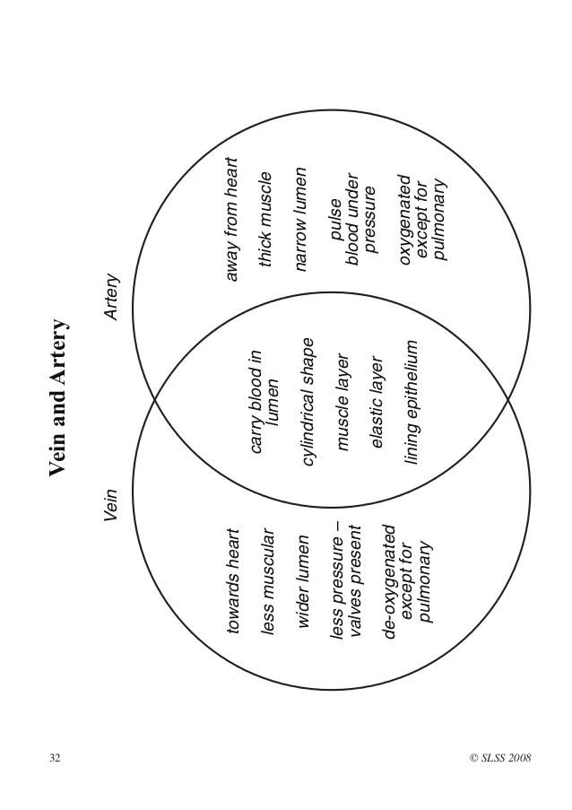 blank diagrams of hiv