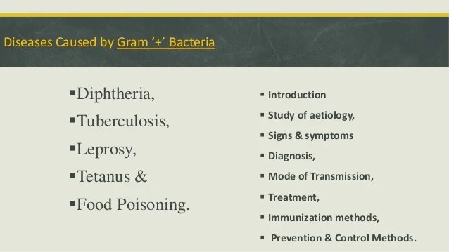 Epidemiology Of Some Diseases Caused By Gram +ve Bacteria