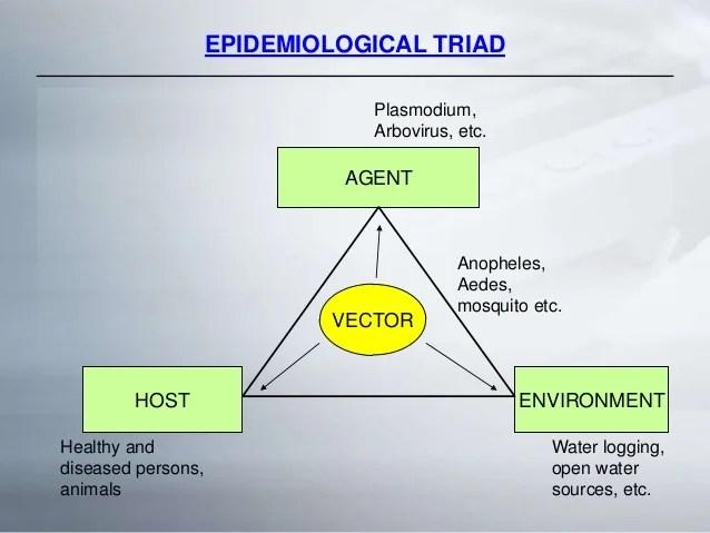 Vector Borne Diseases  The Growing Menace
