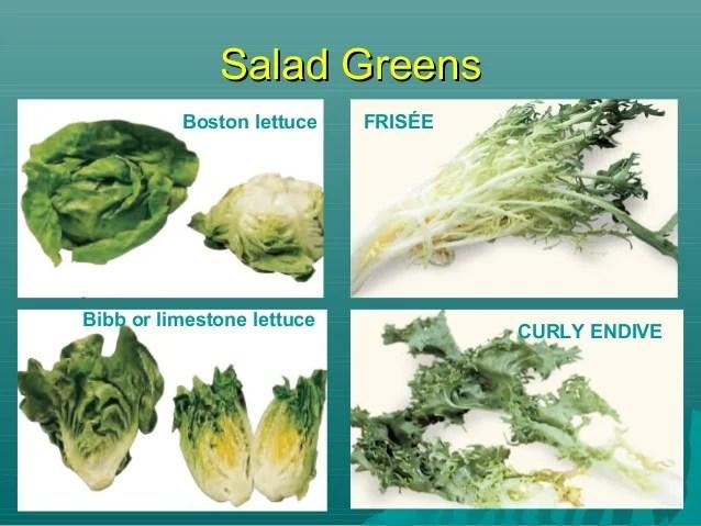 Bibb And Boston Belgian Endive Lettuce