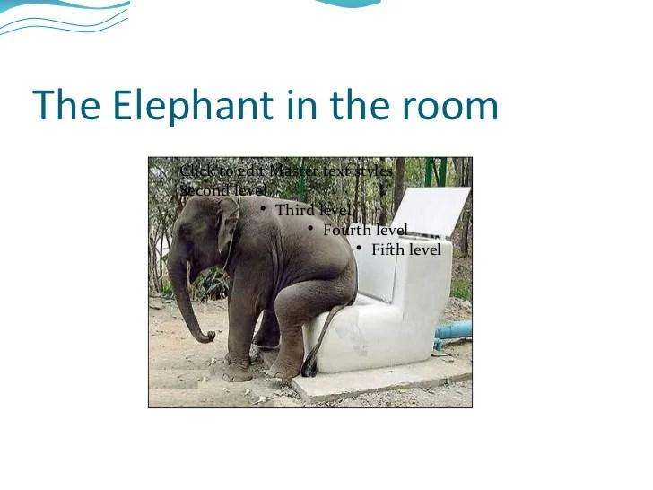 african elephant food chain diagram kubota l3130 alternator wiring elephants in the schematics simple site rh 10 9 sandra joos de