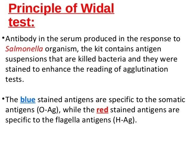 principle of widal test also rh slideshare