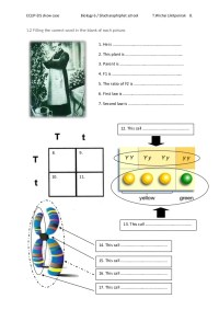 Mendel Worksheet - Bluegreenish