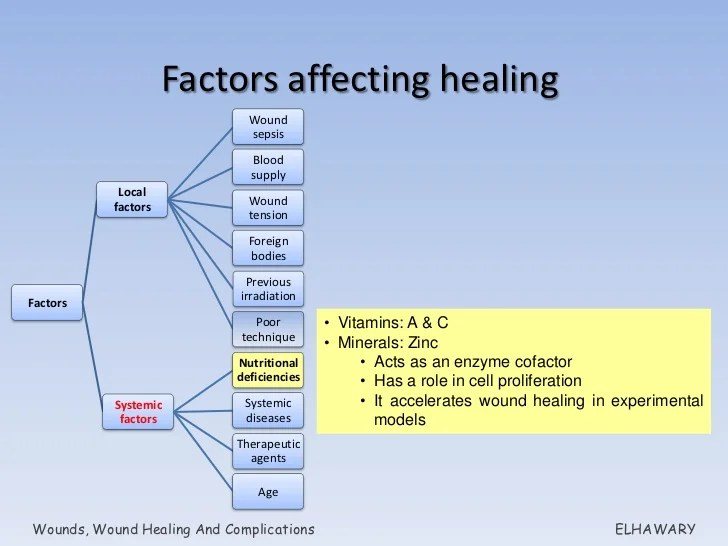 Systemic Factors Affecting Wound Healing - Resume Examples