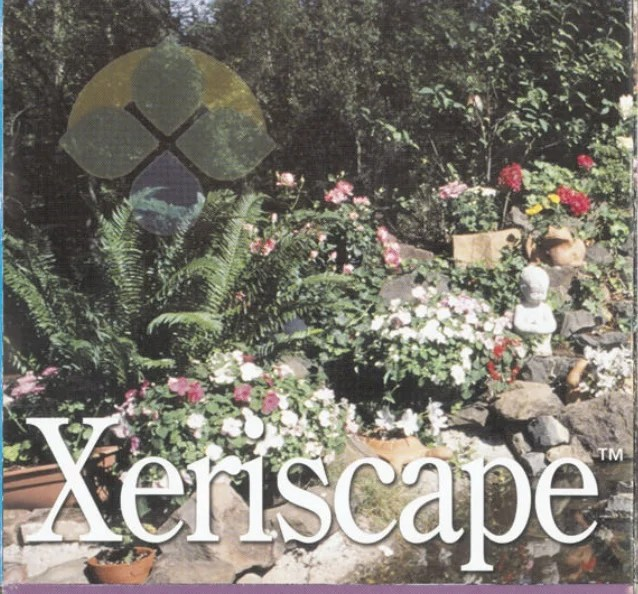 xeriscape drought proof yard