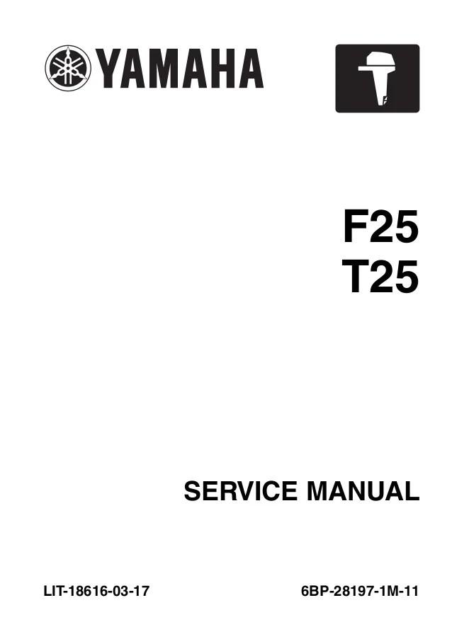 2010 Yamaha T25a 25hp Outboard Service