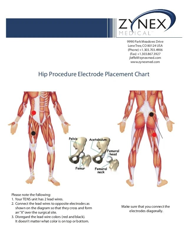 Tens Placement Knee Unit Electrode