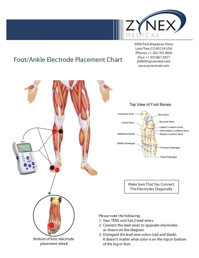 Ankle electrode placement chart park meadows drive lone treeco usa phone also zmpczm foot rh slideshare