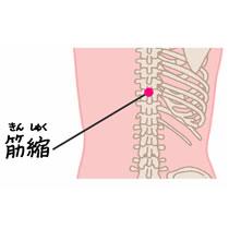 督脈「筋縮(きんしゅく)」 | blog - 楽天ブログ