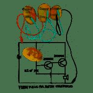 Fresh Music For Rotten Vegetables