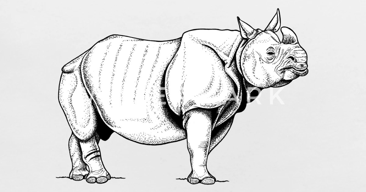 indian rhino ink illustration