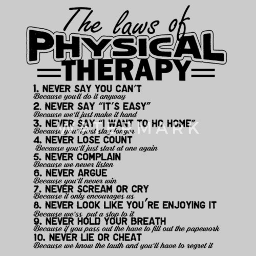 The Laws Of Physical Therapy Shirt Men's Premium T-Shirt