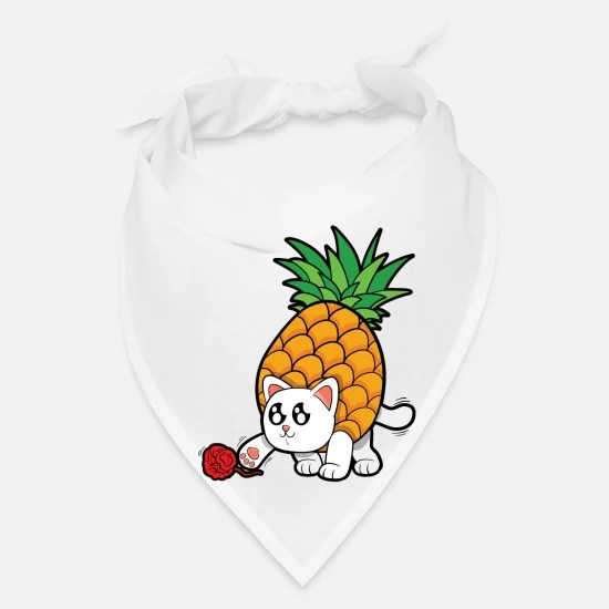 cat pineapple kitten fruit