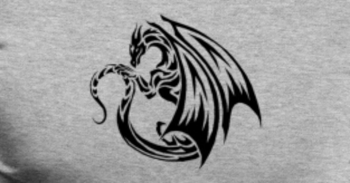 cool dragon logo men