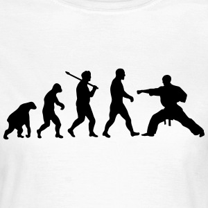 Evolution: Evolution Karate