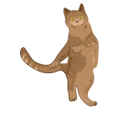 dancing cat sweet gift