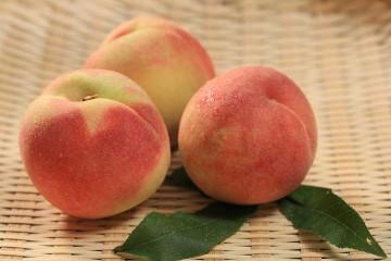 水蜜桃(特大顆)1盒   泰崗部落水蜜桃   SuperBuy市集 - 給您健康的好味道