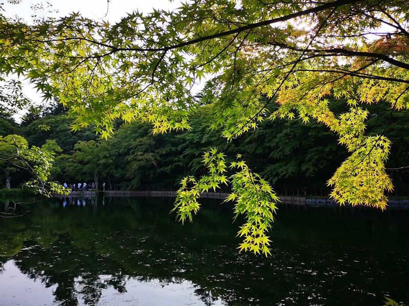 karuizawa09 Karuizawa-輕井澤輕鬆鐵馬行/聖保羅教堂/雲場池