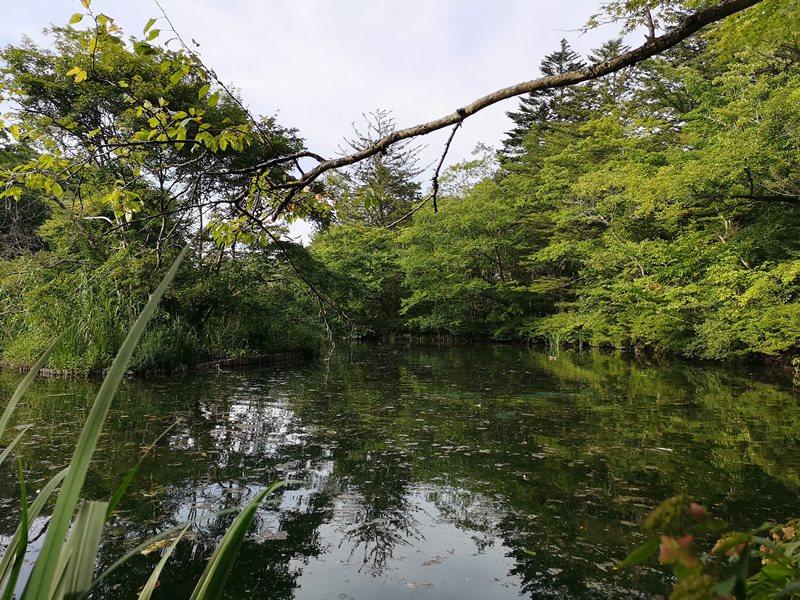 karuizawa11 Karuizawa-輕井澤輕鬆鐵馬行/聖保羅教堂/雲場池