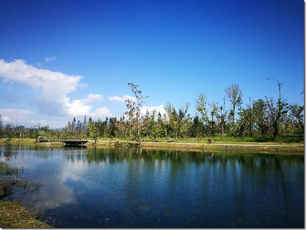 pipalake17_thumb 台東-黑森林琵琶湖 台東版忘憂森林? 美麗無極限之台東森林公園