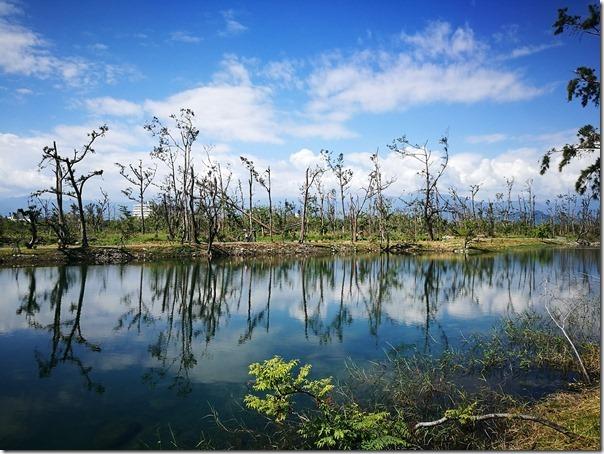 pipalake23_thumb 台東-黑森林琵琶湖 台東版忘憂森林? 美麗無極限之台東森林公園