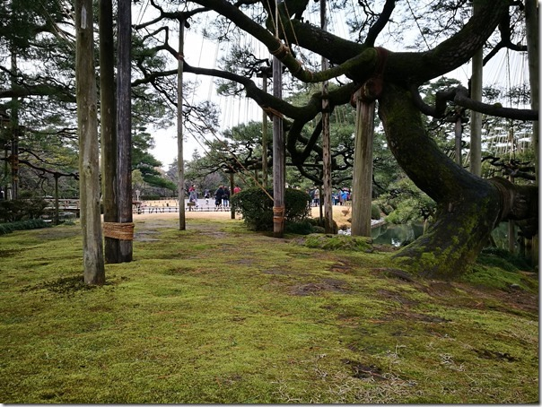 kenrokuen5008_thumb Kanazawa-日本三大名園 二訪兼六園 金澤必訪