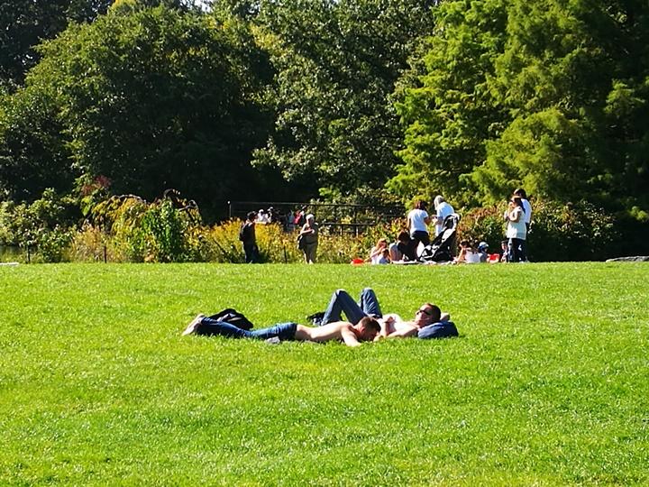 centralpark15 New York-果真大蘋果之紐約真好玩 中央公園 躺著曬太陽也愜意的好所在