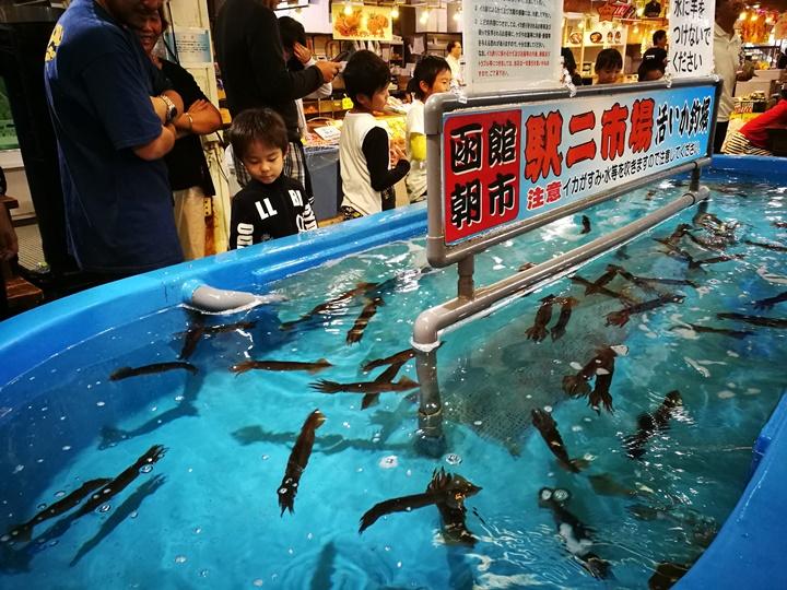 hakodatemorningmarket09 Hakodate-有趣函館朝市&きくよ食堂的海鮮丼飯 北海道必吃