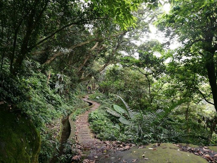 chingshanwaterfall15 石門-青山瀑布步道 輕鬆愜意舒適賞瀑布