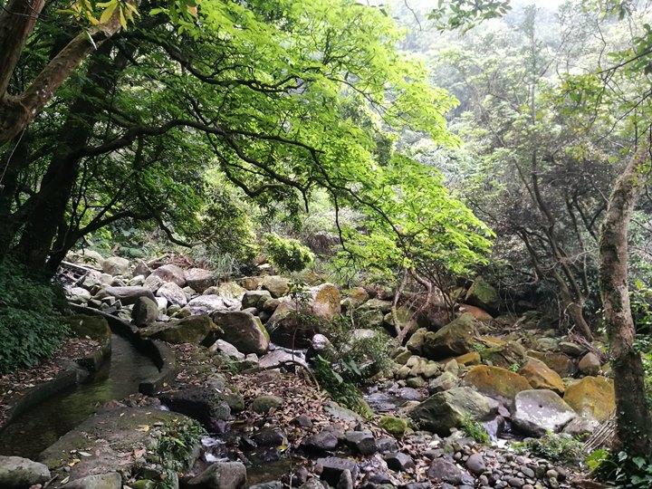 chingshanwaterfall16 石門-青山瀑布步道 輕鬆愜意舒適賞瀑布