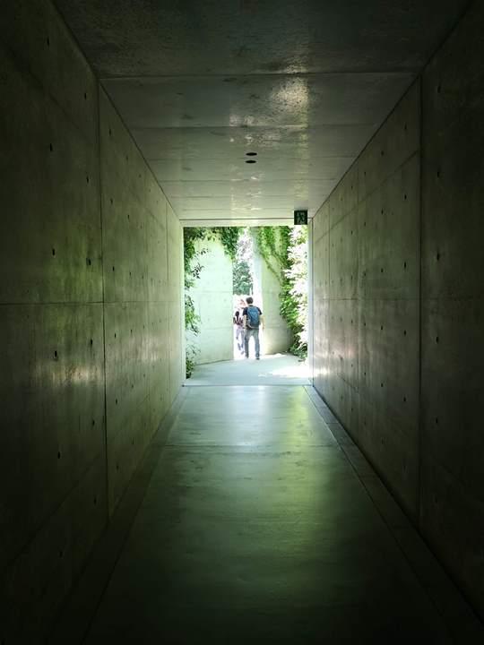 chichu12 Naoshima-地中美術館 藝術直島 安藤忠雄大作 建築美展覽有深度