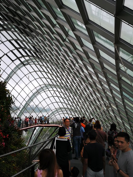 gardens-by-the-bay44 Singapore-Gardens by the Bay之Flower Dome/Cloud Forest新加坡的巨大溫室...盛夏最好的去處