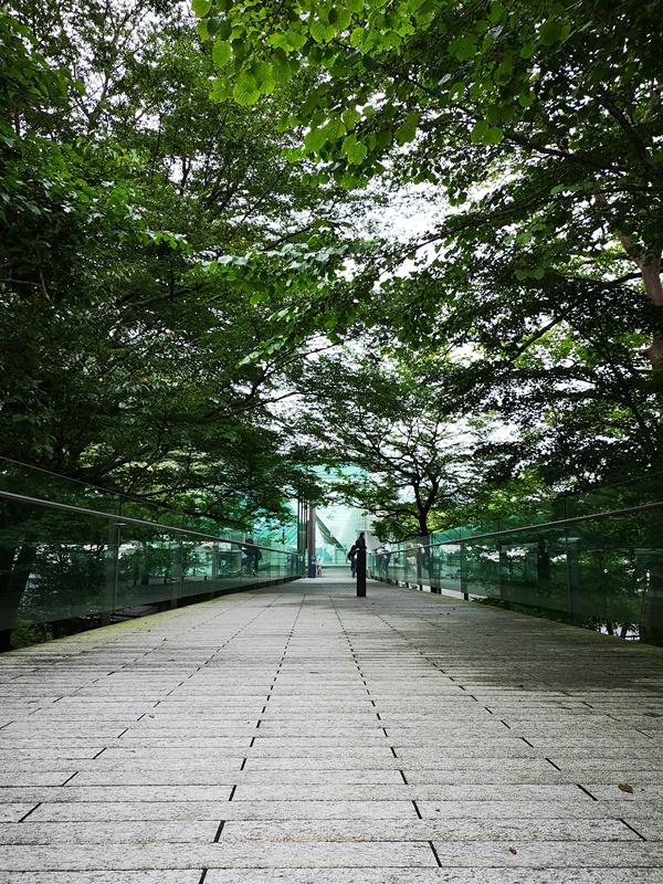 polamuseum03 Hakone-箱根Pola Museum of Art森林中的綠寶石 自然與人文兼具的美術館