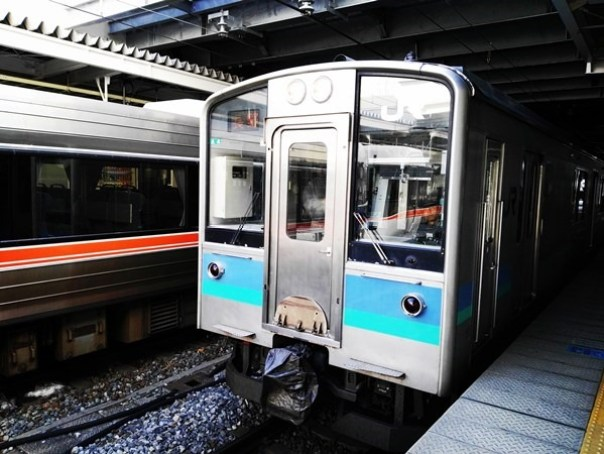 JRPass11 Tokyo-JR East Pass Flexible 5 Day東日本通票 即將改版(兩星期任選5天使用)