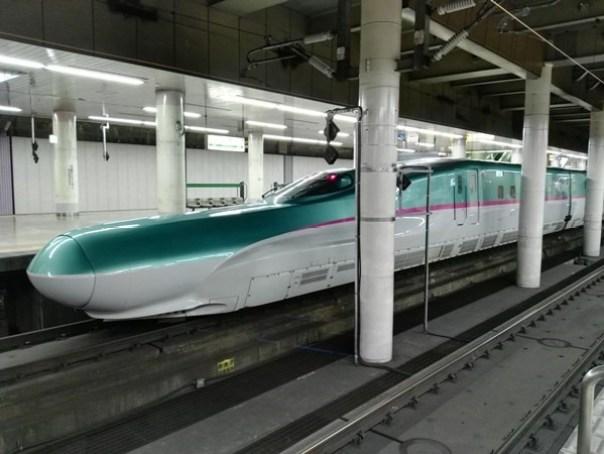 JRPass18 Tokyo-JR East Pass Flexible 5 Day東日本通票 即將改版(兩星期任選5天使用)