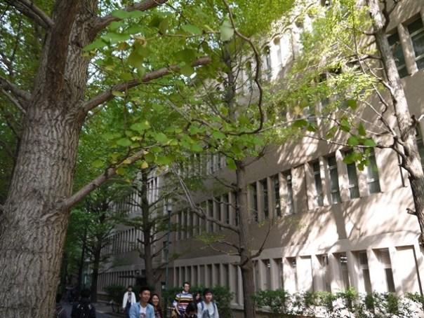 WASEDA170123 Waseda-都電荒川線散策之早稻田大學&鬼子母神社