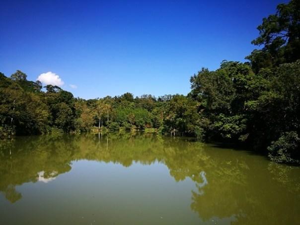 cihu16 大溪-後慈湖 清幽舒適彷彿桃花源的秘境