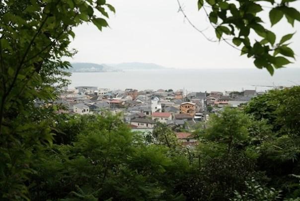 flowertemple47 Kamakura-鎌倉長谷寺 紫陽花季人山人海啊
