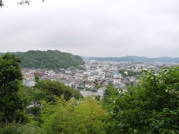 flowertemple48 Kamakura-鎌倉長谷寺 紫陽花季人山人海啊