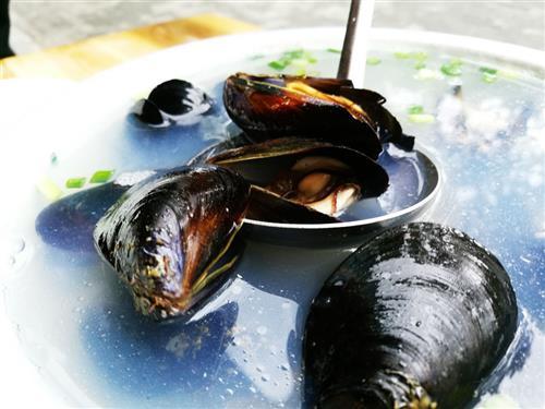河蚌_水產品_食品百科_食品科技網