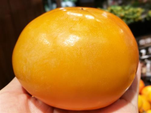 秋季吃柿子的禁忌_飲食禁忌_飲食指南_食品科技網