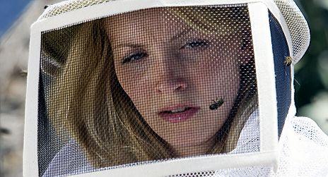 Die Bienen Tödliche Bedrohung Kritik Zum Film Tittelbachtv
