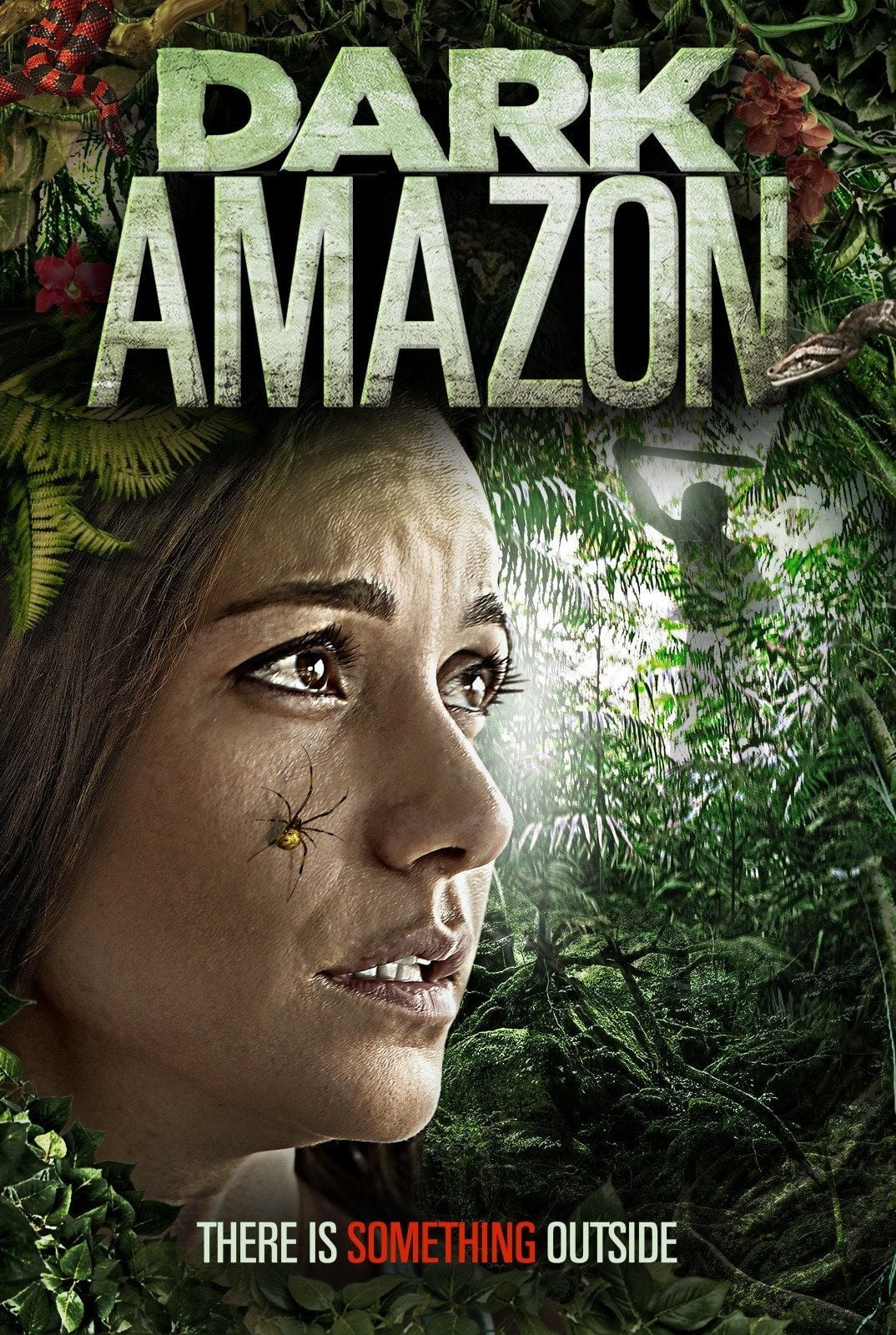 Image Dark Amazon