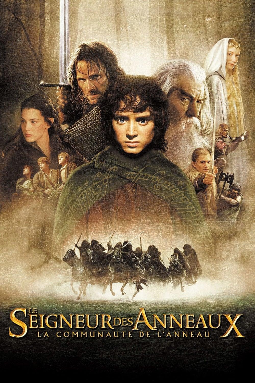 Seigneur Des Anneaux 2 Streaming : seigneur, anneaux, streaming, Seigneur, Anneaux, Communauté, L'anneau, Streaming, Trozam