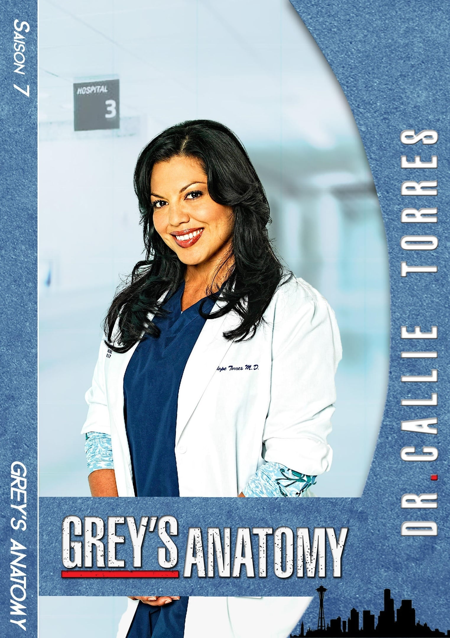 Grey's Anatomy Saison 14 Streaming Gratuit : grey's, anatomy, saison, streaming, gratuit, Greys, Anatomy, Streaming, Saison, Vostfr, Iksticky