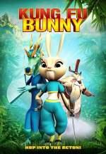 Kung Fu Bunny